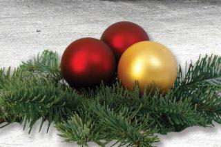 Popřáli jsme krásné Vánoce Ondráškovi